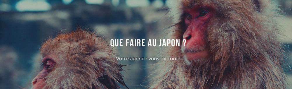 Partir au Japon : notre guide complet pour réussir son séjour